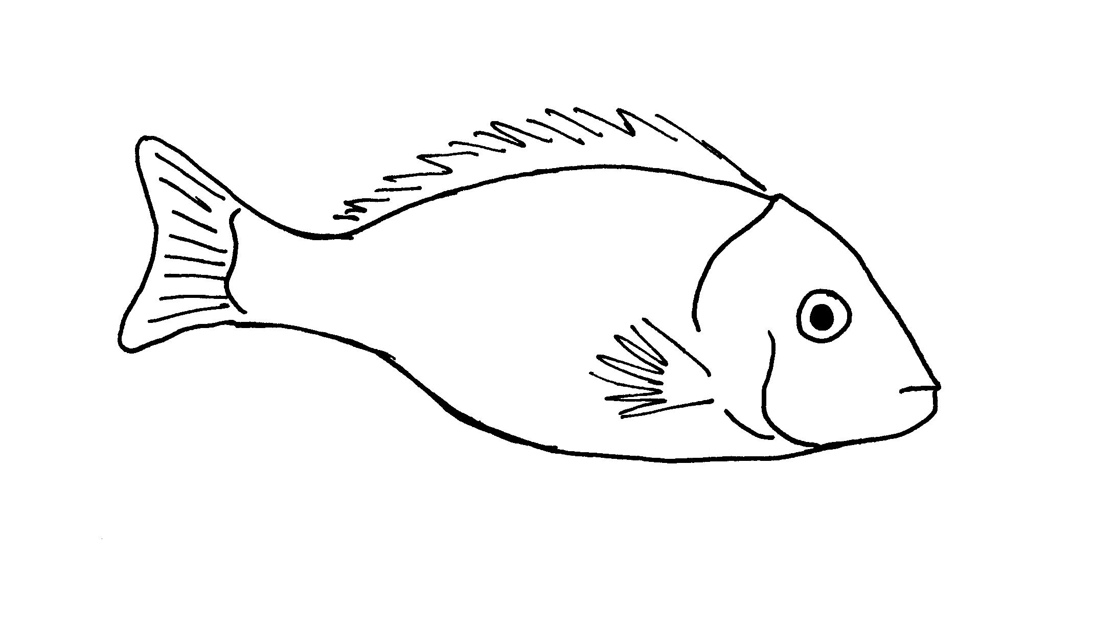 Simple Fish Line Art : Simple fish line drawing