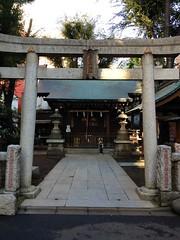 朝散歩 - 神社 (2012/11/4)