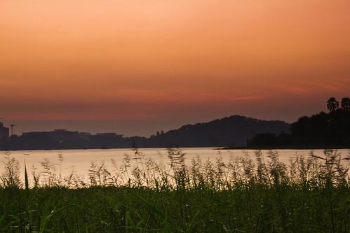 longexposure sunset sky lake nature water beautiful beauty grass night scenery silhouettes peaceful hills serenity bombay serene mumbai eveningsky iitb iitbombay powailake blurredgrass pwpartlycloudy