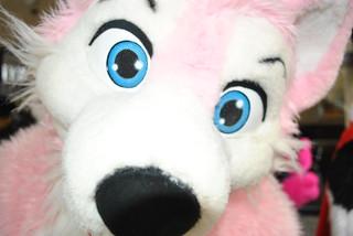 Pink Husky Face