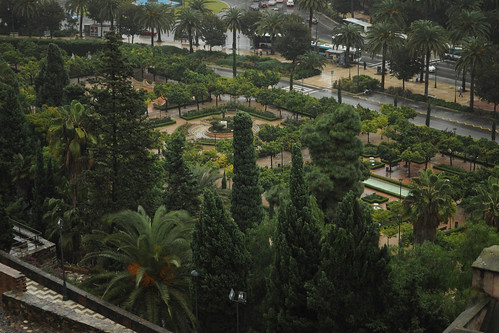 Jardines de Pedro Luis Alonso from the Alcazaba