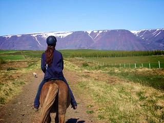 Road from Skjaldarvík