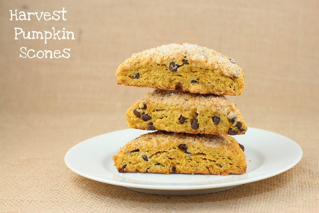 Harvest Pumpkin Scones - King Arthur Flour