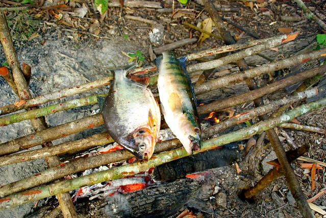 peru-amazon-fish-over-fire