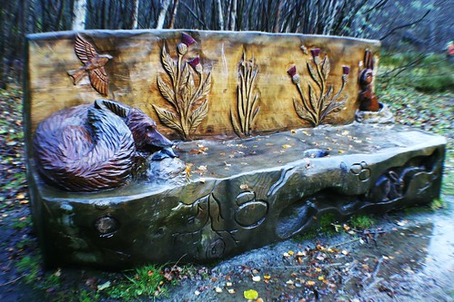 Carved Wooden Seat at Doune Ponds