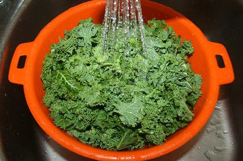 16 - Grünkohl abspülen / Wash borecole