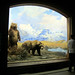 Small photo of American Museum of Natural History