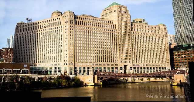 Merchandise Mart in evening light..