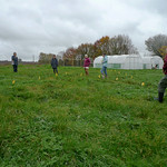 taking soil samples - soil science - 13th Nov
