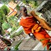WeGoTwo posted a photo:	A young monk in a hurry to escape the camera.  He almost succeeded.