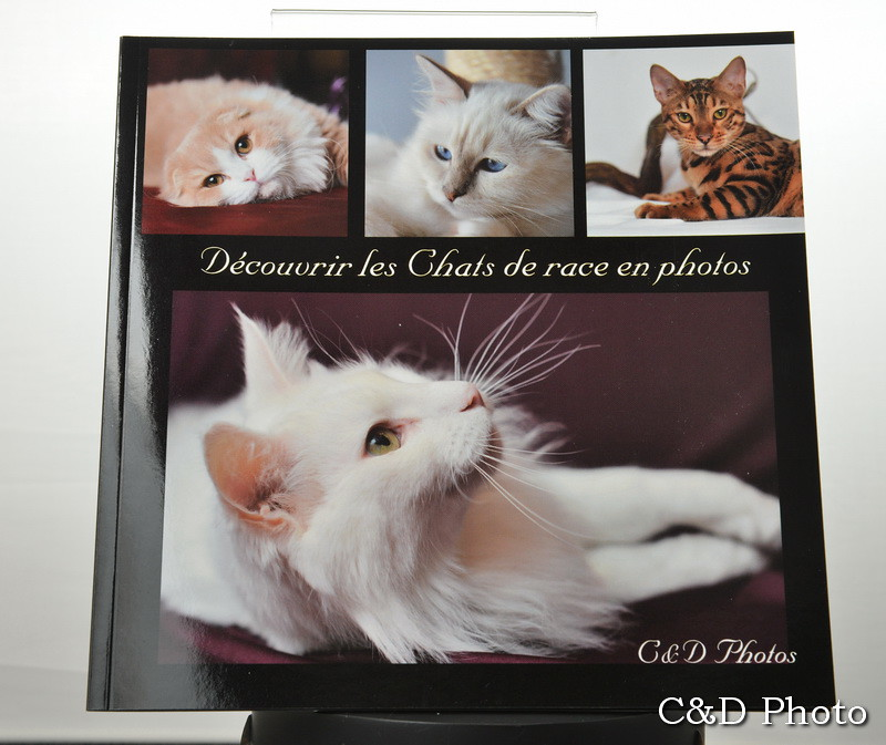 Page Couverture livre photos chats de race cnd photos