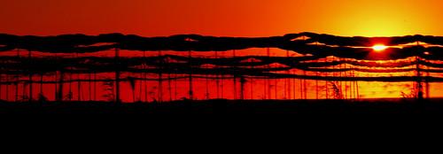 sunset sky cloud naturaleza sun sol nature méxico mexico atardecer tramonto sonnenuntergang cielo puestadesol nube aprèsmidi sinaloa tierra zalazaksunca solnedgång postadesol mazatlán закат abenddämmerung culiacan auringonlasku capvespre amspätennachmittag neltardopomeriggio