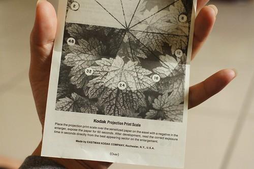DSC07790Kodak Projection Print Scale