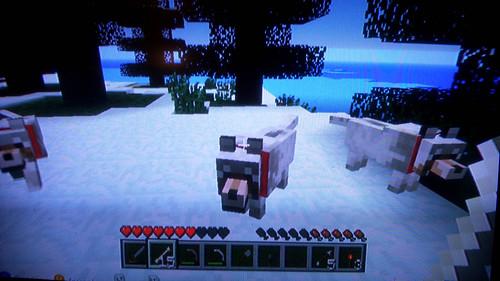 MinecraftDogsOnTheHunt
