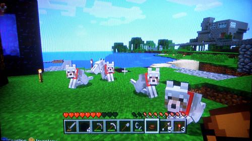 MinecraftDogsAtHome