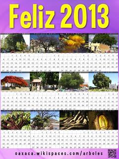 Lavender Feliz 2013: Arboles de Oaxaca (Oaxaca Trees) @OaxacaFertil