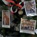 352/366... December 17/12... work tree