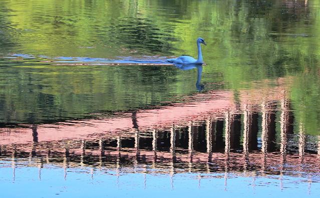 Victoria Bridge Impressionism.