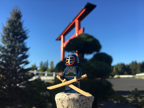 LEGO Collectible Minifigures Series 15 : Kendo Fighter