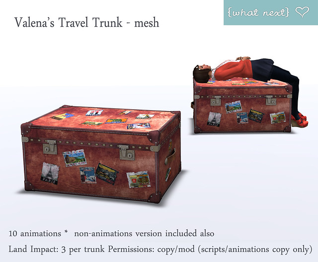 {what next} Valena's Travel Trunk