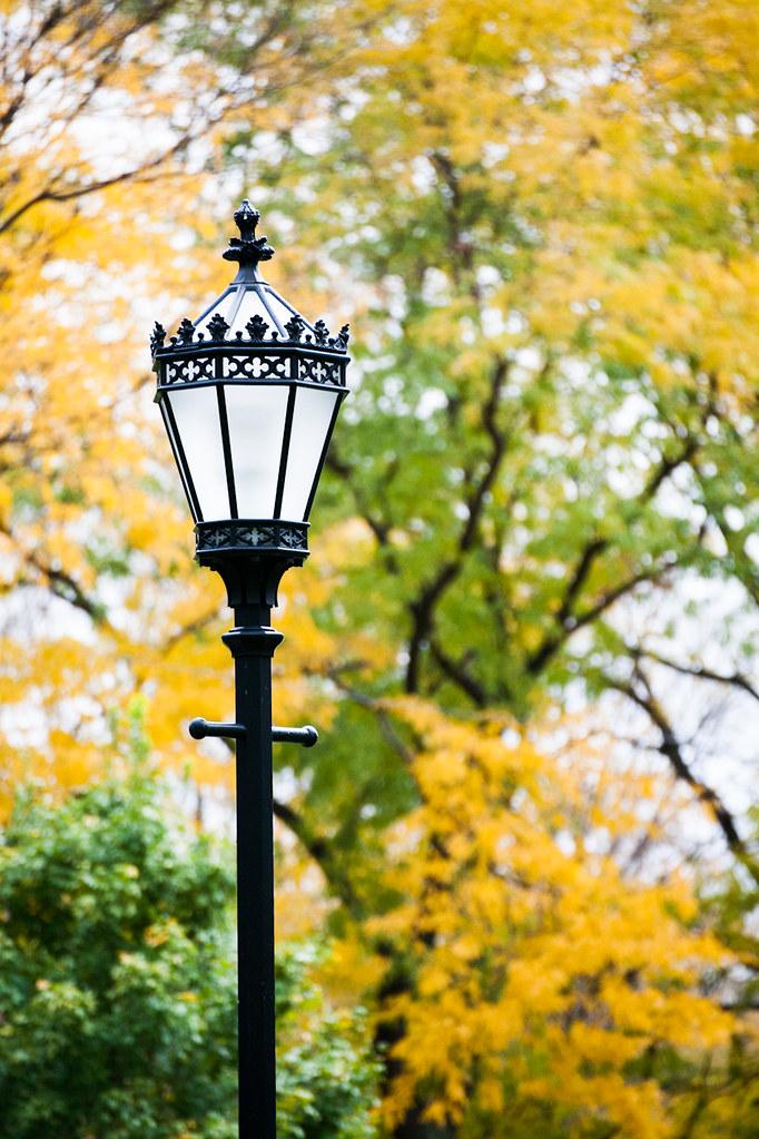 Fall Lamps