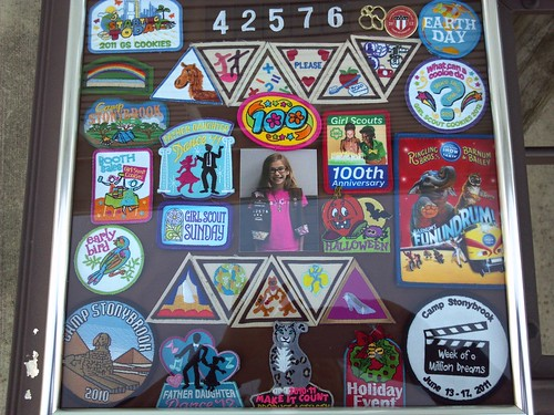 IC22 UFO - Brownie Badge Frame