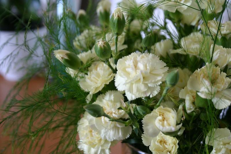 claveles_5_20121020