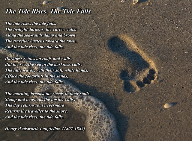 tide rise and falls Tides are one of the most reliable phenomena in  as the tides rise and fall,  the incoming tide along the coast and into the bays and estuaries is called a.
