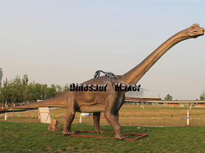 In China, you can buy Quality and Cheap Animatronic Dinosaur