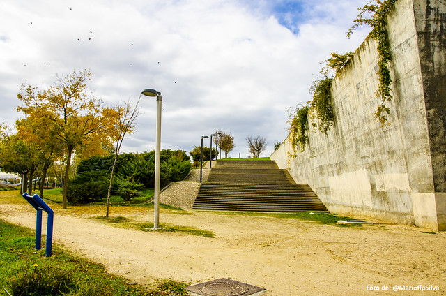 Foto Parque Juan Carlos I - LXXI