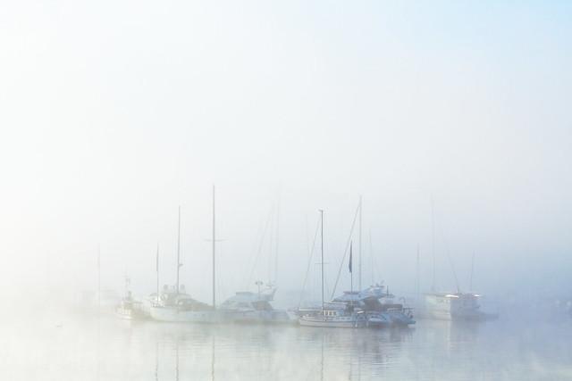 Sun dissolves the morning fog