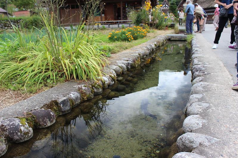 白川郷を散策 水路