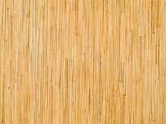 The world 39 s best photos of nature and solid flickr hive mind for Can you change the color of bamboo flooring