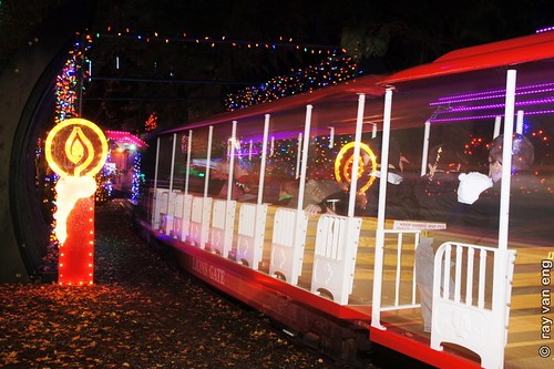 Bright Nights 2012 at Stanley Park with a Christmas Mini-train Ride through a Winter Wonderland of Colorful Lights