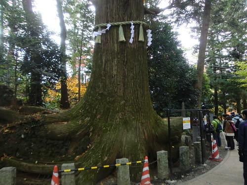 20121203高尾山053