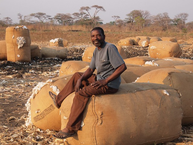 A relaxed Forbes Gwilize seated on his remaining cotton bags. Credit: Nebert Mulenga/IPS