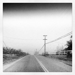 Day 7: From where I live/come from - a foggy, misty day. #Reedley #fmsphotoaday #december