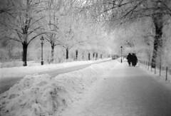 Karlavägen street in snow, Stockholm, Uppland, Sweden