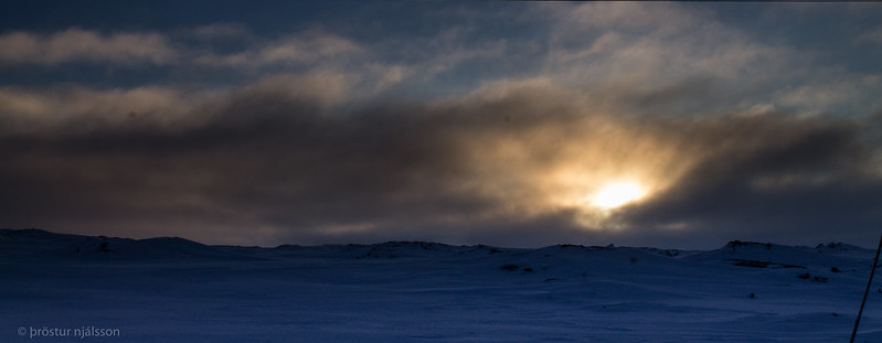 iceland skjaldbreið