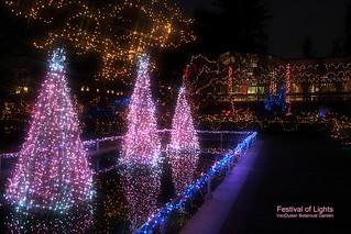 Festival of Lights at VanDusen Botanical Garden