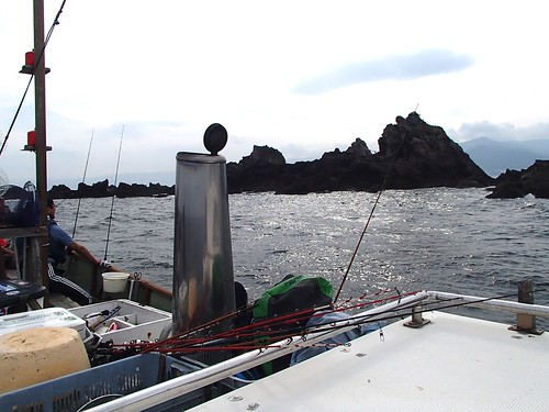 日本伊豆半島的釣魚 - naniyuutorimannen - 您说什么!