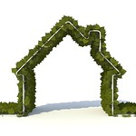 3D Green Home Ver2