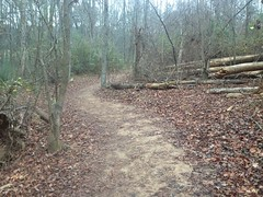 Caney Creek Preserve Trail Singletrack