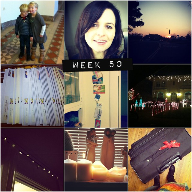 2012 in pictures: week 50