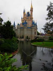 Disney-Orlando_12