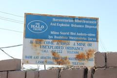 Landmine Removal