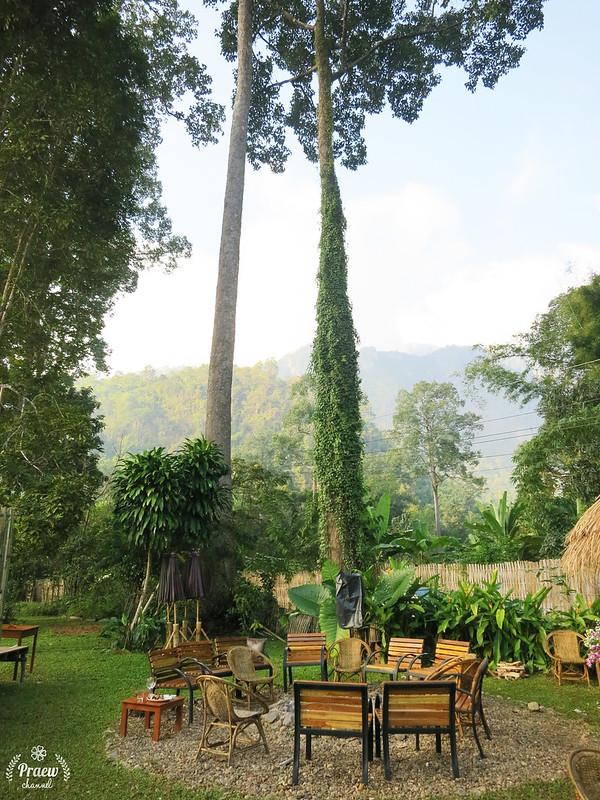 Chiangdao Nest Resort, Chiangdao, Chiangmai