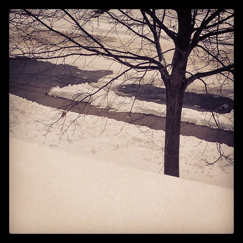#FMSphotoaday December 28 - Cold