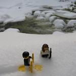 LEGO Wolf & Sunflare