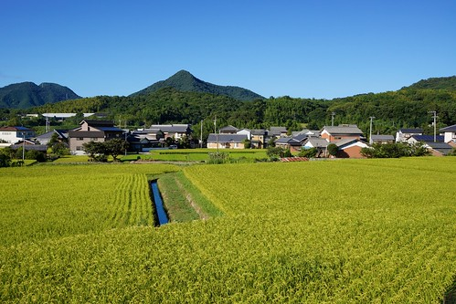 mountains green field japan rice sony 日本 irrigation 米 apsc nex7 sel24f18z e24mmf18za gettyimagesjapan12q4 gettyimagesjapan13q1 ©jakejung